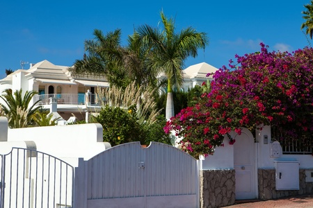 New residential houses with bouganvilles flower and palms