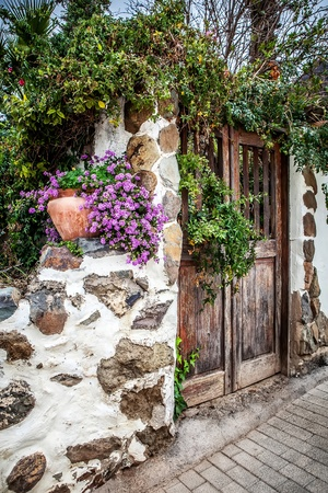 old wooden door in garden with pink flower Stock Photo - 18392842