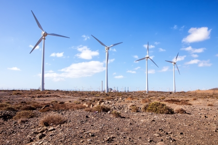 eolic: eolic park with windmills on desert landscape