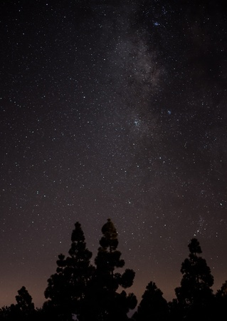 milkyway: the milky way and tree in a perfect clear night Stock Photo