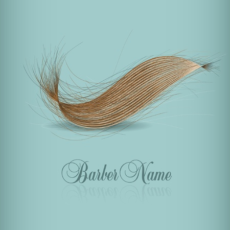 vector design for hair logo Vector