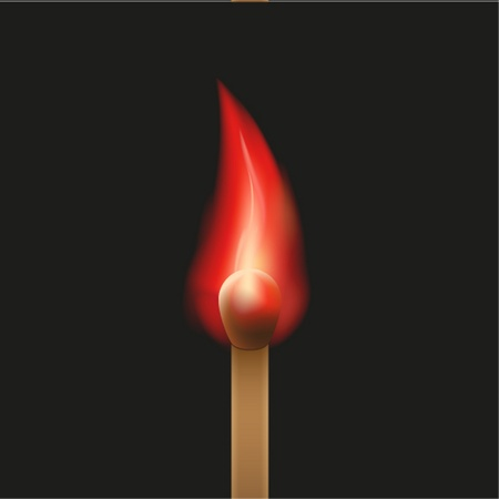 Vector burning match on a black background Vector
