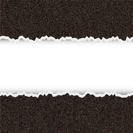shred: Vector torn piece of rough paper with place for your text