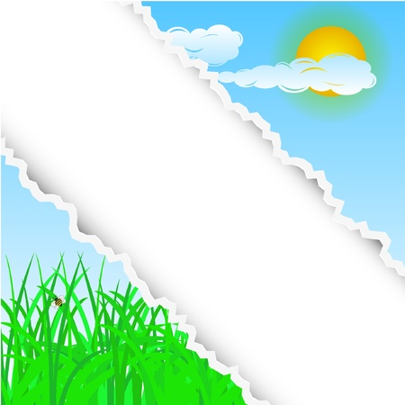 summer torn background with place for your text. Vector illustration Stock Vector - 11779639