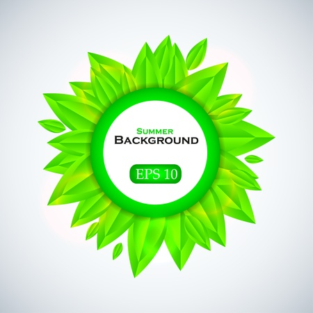 verdure: summer background with place for your text. Vector illustration