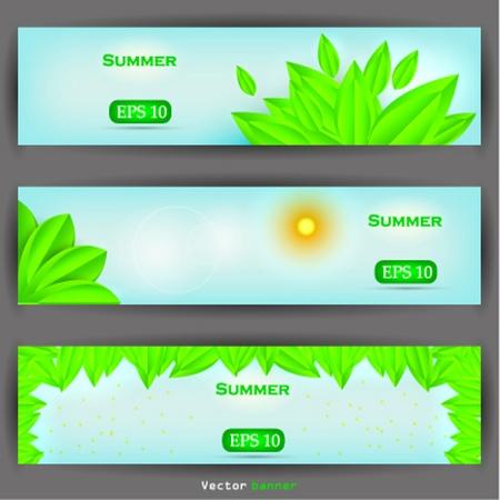 floral banner set. Vector illustration Stock Vector - 12028477