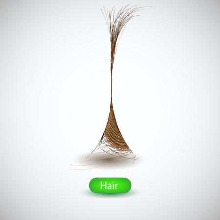 Hair background. vector illustration Stock Vector - 12074825