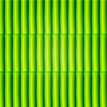 Vecteur de fond en bambou. Eps10