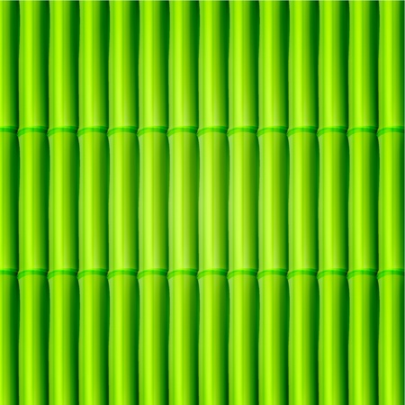 Vector bamboo background. Eps10 Vector