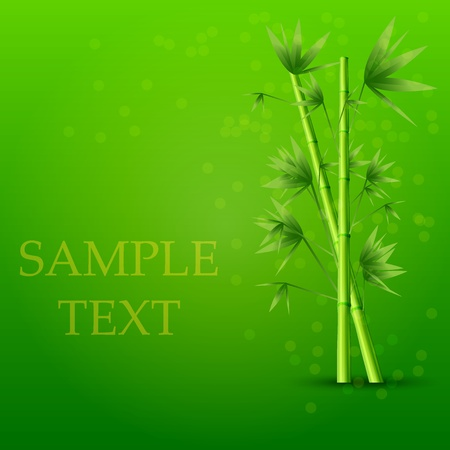 Vector creative bamboo background. Eps10 Vector