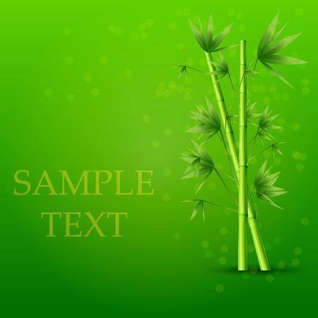 Vector creative bamboo background. Eps10 Stock Vector - 12763491