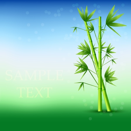 Vector abstract bamboo background. Eps10 Vector
