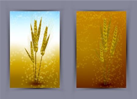 Vector wheat creative poster.  Vector