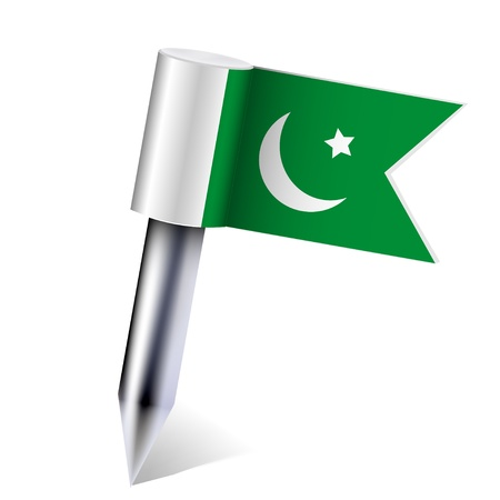 pakistan flag: Vector Pakistan flag isolated on white.
