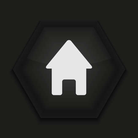 icon home: Vector creative icon on black background. Eps10