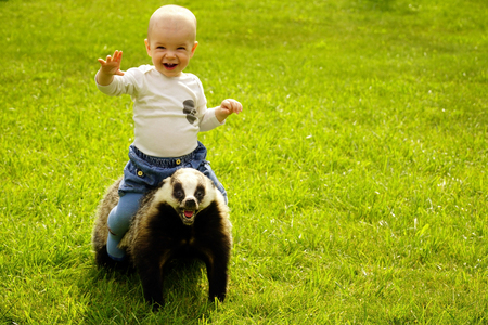 sits: small boy sits astride a scarecrow badger in the garden