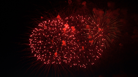 pyrotechnics: fireworks in the night sky in honor of the holiday.