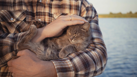young guy stroking a cat on the nature near the lake. Stockfoto