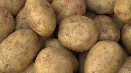 close up Potato pile background