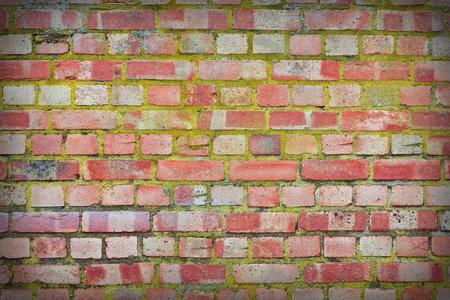 brick wall background Stock Photo - 9959728