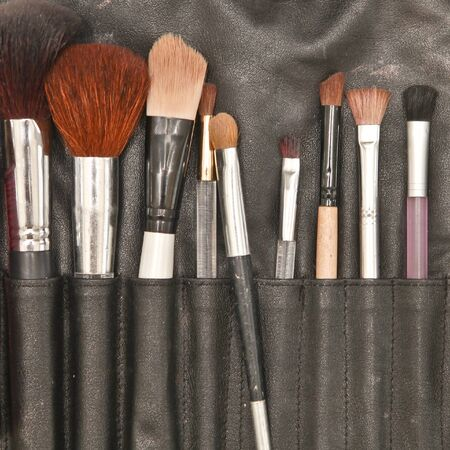 make up brushes: Selection of make up brushes in a leather holder Stock Photo