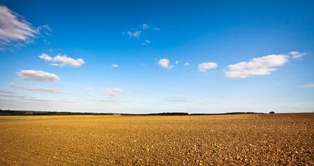 Beautiful wide angle image of a freshly tilled field in the UK on a crisp autumn day, could be used as a template with plenty of copyspace photo