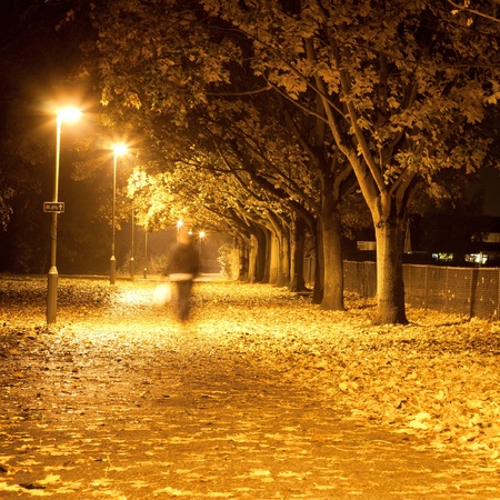 Lovely square image of a blurred person waling along a path at night with autumn leaves photo