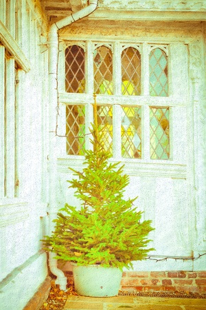 english house: Nice textured image of a christmas tree outside a medieval english house