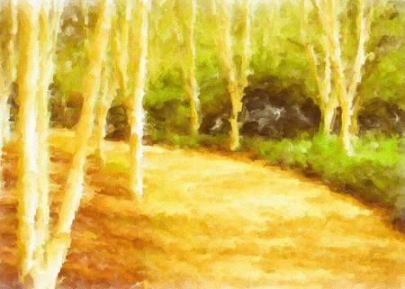 rural scene: Lovely digital painting of a rural woodland scene