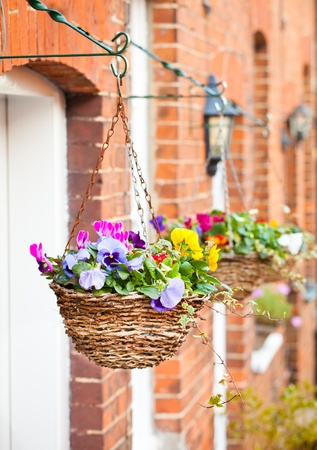 Row of hanging baskets outside red brick houses