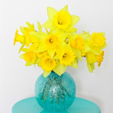 Beautiful bunch of fresh spring daffoldils in a glass vase photo