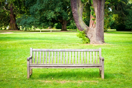 A wooden bench in lush green parkland in summer Stock Photo - 15636540