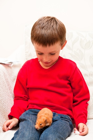 A 5 year old boy with a pet hamster Stock Photo - 17526955