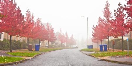 Misty autumn scene in a UK neighbourhood photo