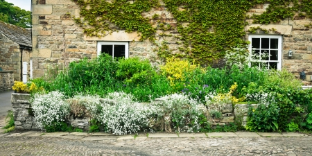 Vibrant summer plants at the front of a stone cottage in England