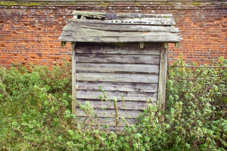 dwell house: Old wooden hut in an overgrown garden