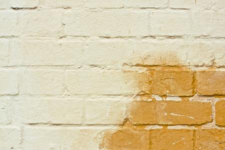 damp: Muro di mattoni alterate mostrando una macchia d'umido