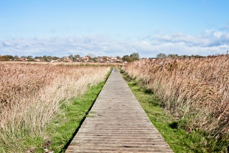 suffolk: Wooden boardwalk through wet marshes in Suffolk, UK Stock Photo