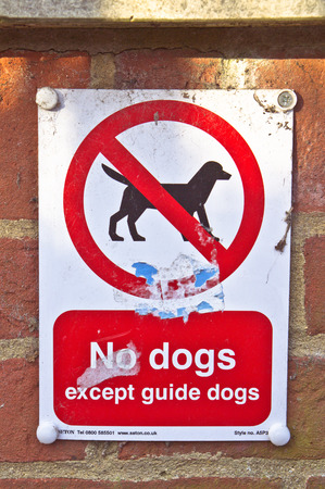 No dogs sign on a brick wall, allowing guide dogs only photo