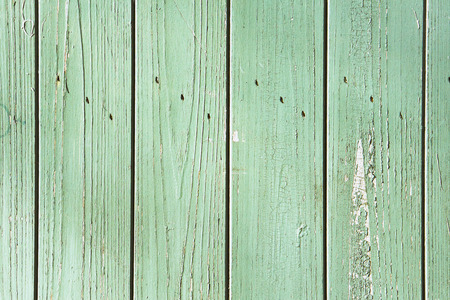 Green wood panels as a textured background photo