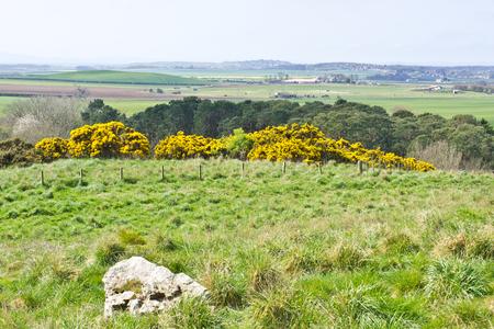 lothian: Landscape view of rural Lothian, in Scotland