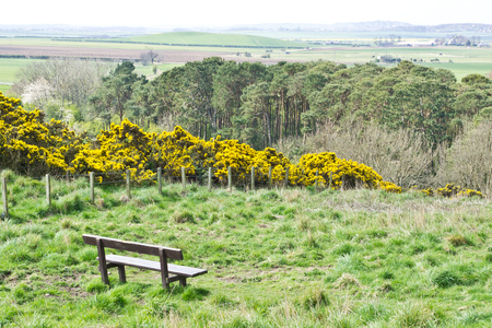 lothian: Landscape view of rural Lothian, in Scotland with a bench in the scene