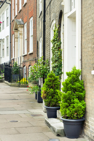bury: Town houses with plants in Bury St Edmunds, UK