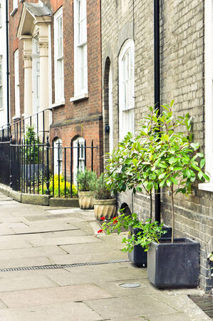 Town houses with plants in Bury St Edmunds, UK photo