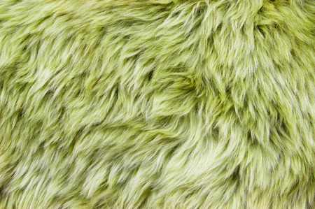 soft furnishing: Close up of a green dyed sheepskin rug as a background