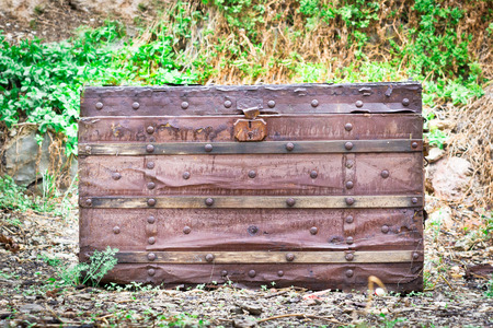 sumptuous: An antique wooden chest in a garden Stock Photo