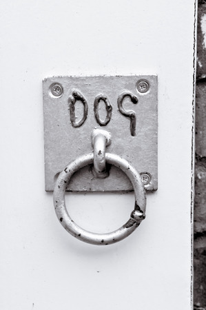 tether: A ring on a wall for tying a dog lead Stock Photo