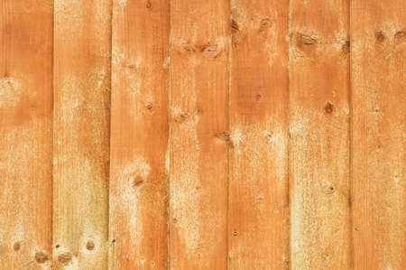 treated: Wooden fence panels recently treated with wood preservative