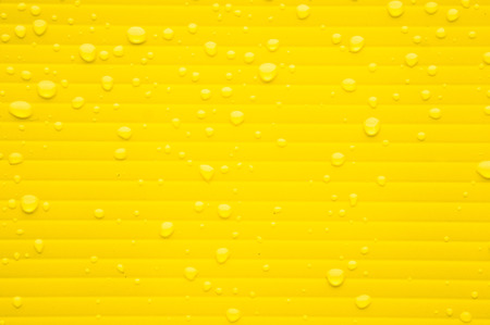 wetness: Drops of water from rain on a yellow plastic surface