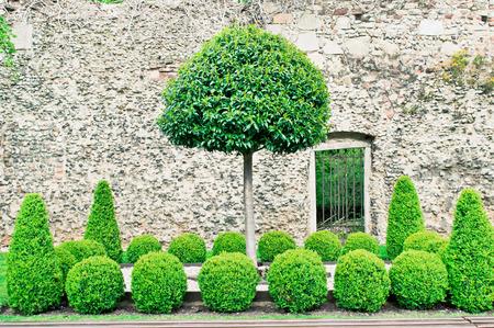 中世のレンガの壁の装飾刈り込み法のきちんとした表示
